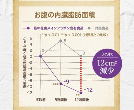 お腹の内臓脂肪面積 試験結果