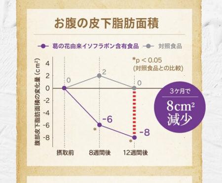お腹の皮下脂肪面積の試験結果