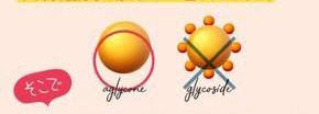 アグリコン型イソフラボンの画像